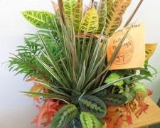 #37 Fall Blessings donated by Kathy Sletten